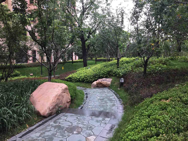园林植物种植--种植施工的原则及准备
